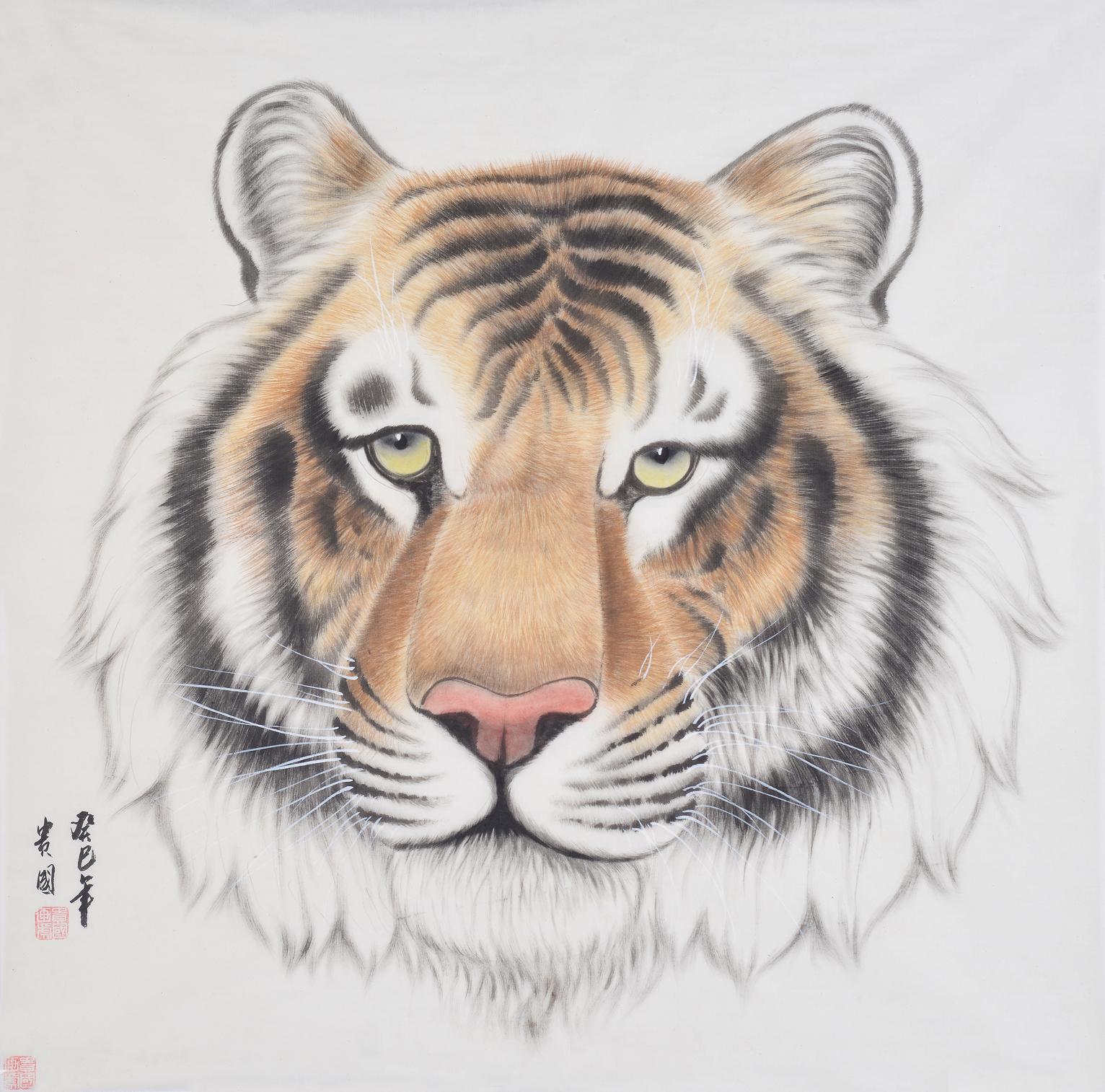 王贵国四尺斗方动物画作品《老虎》