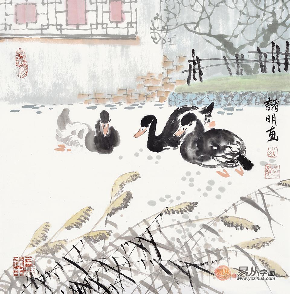 诸明小尺寸斗方花鸟画作品 鸭子三兄弟