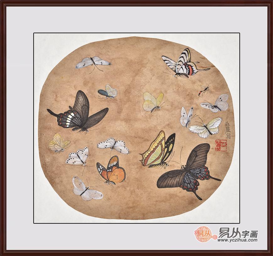 蝴蝶工笔画欣赏